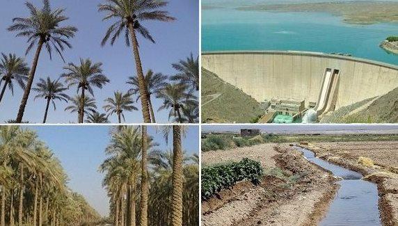 کارگروه تعیین سهمیه آب نخیلات استان بوشهر تشکیل می شود