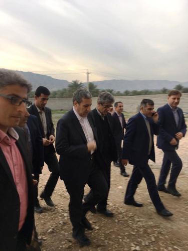 بازدید معاون توسعه روستایی و مناطق محروم کشور از طرح های صنایع تبدیلی بخش کشاورزی استان بوشهر