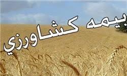 برگزاری کارگاه آموزشی بیمه کشاورزی در استان بوشهر