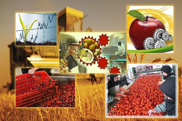 بهره برداری از 13 واحد تولیدی صنایع تبدیلی کشاورزی در سال اقتصاد مقاومتی