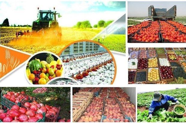 21واحد تولیدی بخش کشاوری به بهره برداری رسید
