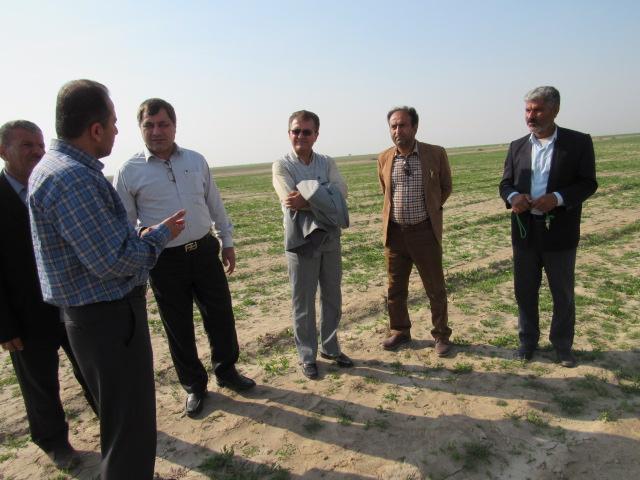 بازدید رییس مرکز اصلاح نژاد دام و بهبود تولیدات دامی وزارت جهاد کشاورزی از طرح ها و پروژه های دامی استان بوشهر