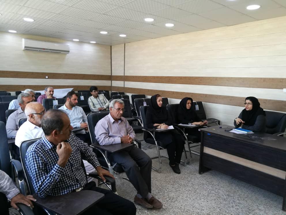 طرح تجهیز اراضی حاشیه حله استان بوشهر به سامانه نوین آبیاری کم فشار کلید خورد