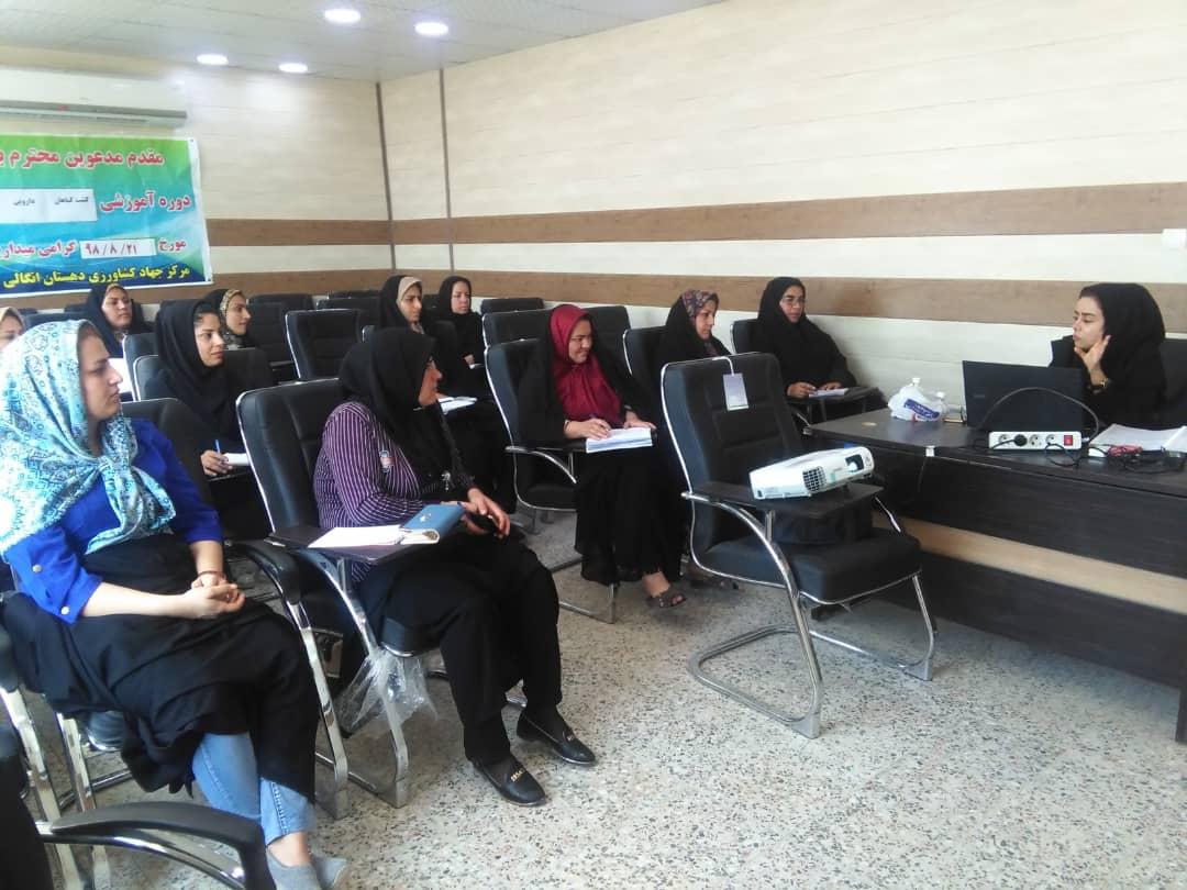 کارگاه آموزشی کشت گیاهان دارویی در شهرستان بوشهر برگزار گردید