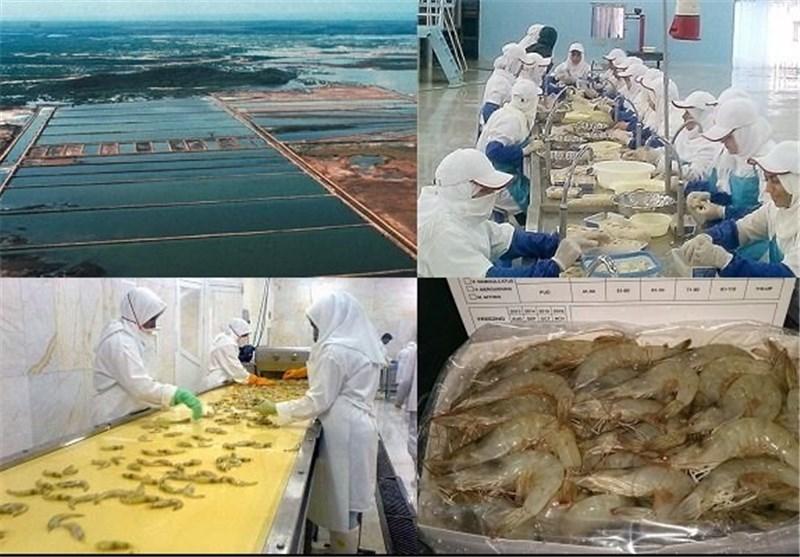 9 واحد تولیدی صنایع تبدیلی کشاورزی به بهره برداری رسید