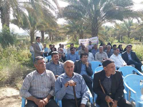 پیشرفت روزافزون کشاورزی استان بوشهر برمبنای تحقیقات علمی