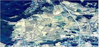 اجرای طرح کاداستر در 450 هزار هکتار از اراضی کشاورزی استان بوشهر