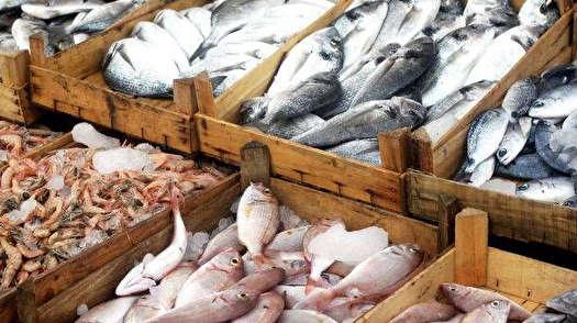 صادرات بیش از 2 هزار تن محصولات شیلاتی به خارج از کشور