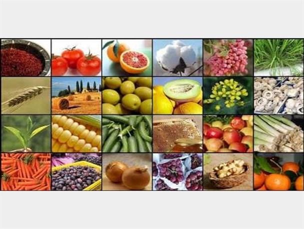 اجرای طرح تولید محصولات گواهی شده در استان بوشهر
